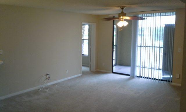 Move in Pics 2-15-14 197